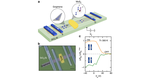 Researchers build graphene-based spintronics 'valve'